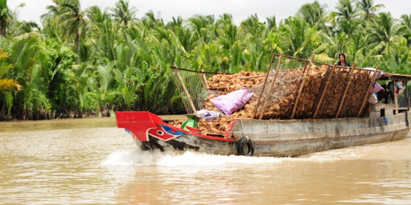 A boat transporting coconut shells on a canal at Mekong River